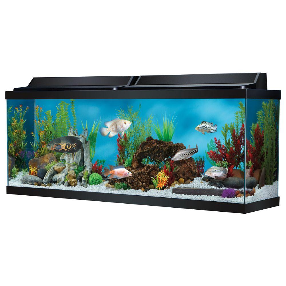 5 gallon aquarium dimensions i all glass 75 gallon for 125 gallon fish tank for sale