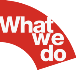 what-we-do-250x230-250x230