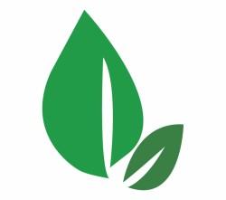 74-741751_leaves-clipart-dark-green-leaf-dark-green-leaf