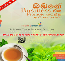 "<div class=""pfwidgettitle""><div class=""widgetheader"">PROMOTE YOUR BUSINESS</div></div><div class=""pfwidgetinner"">"