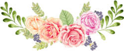 Pink-Flower-PNG-715x715-1-250x103